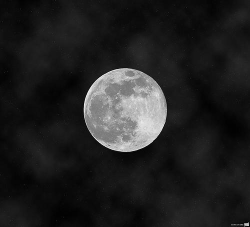luna_081212_y0si